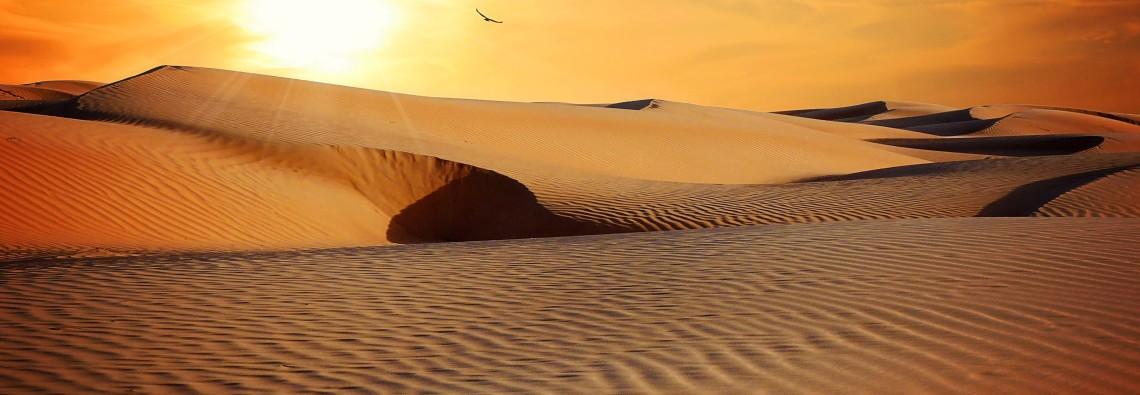 desert-790640